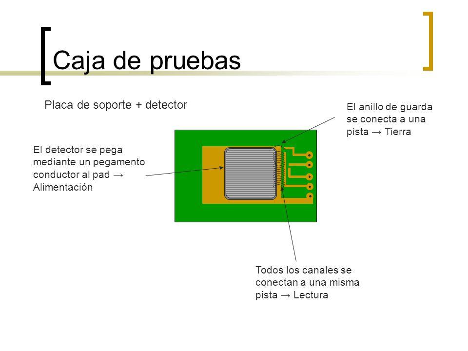 Caja de pruebas Placa de soporte + detector