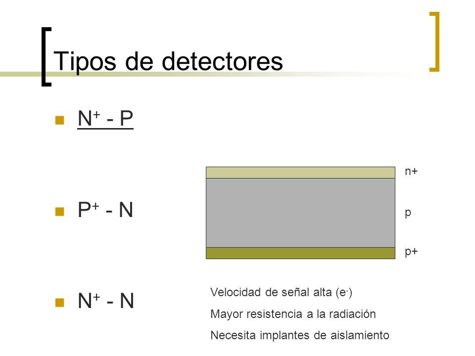 Tipos de detectores N+ - P P+ - N N+ - N n+ p p+