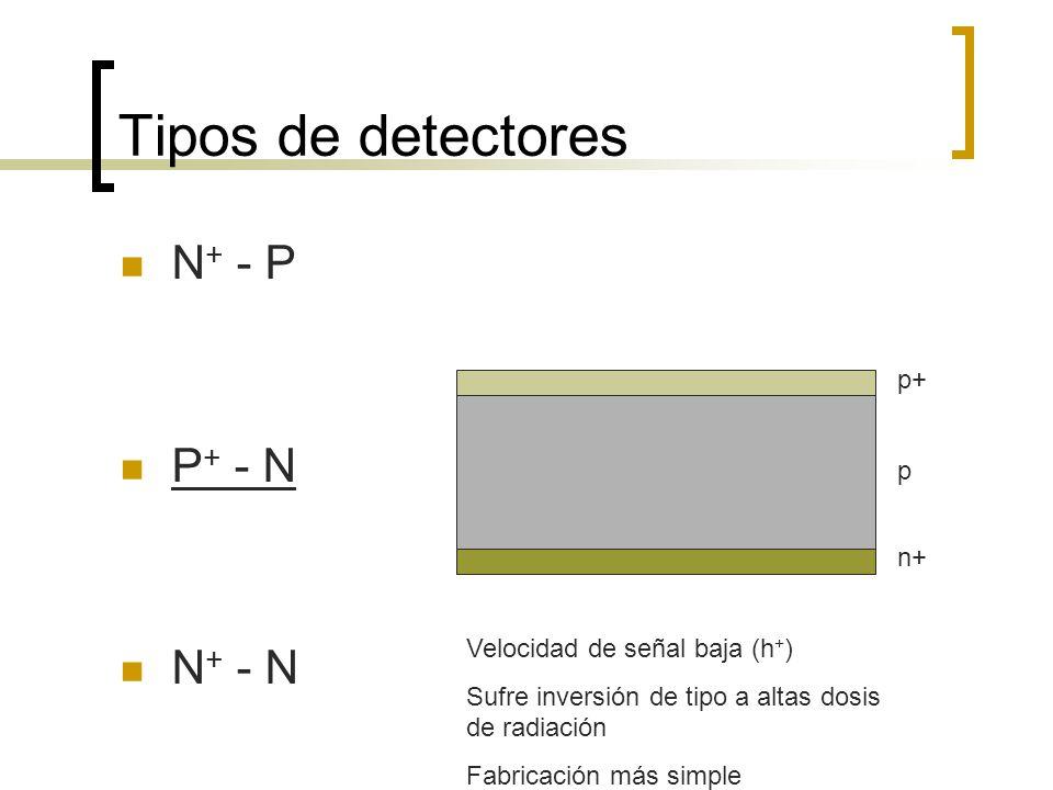 Tipos de detectores N+ - P P+ - N N+ - N p+ p n+