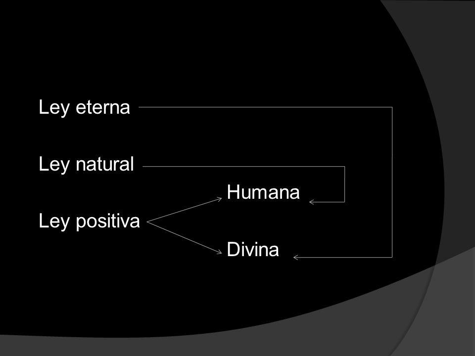 Ley eterna Ley natural Humana Ley positiva Divina