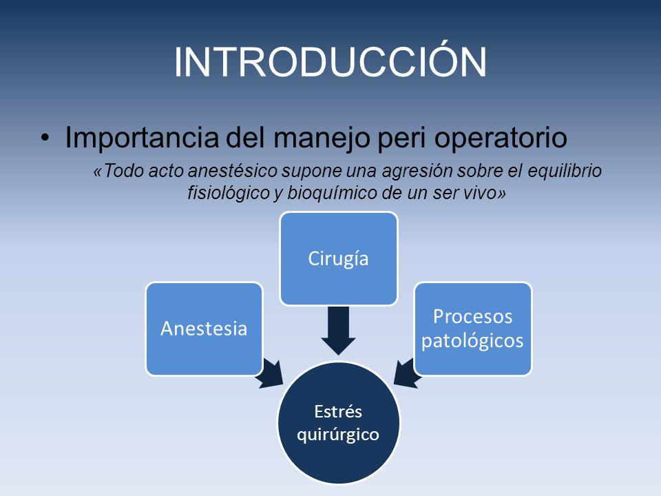 INTRODUCCIÓN Importancia del manejo peri operatorio Cirugía