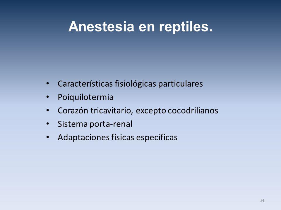Anestesia en reptiles. Características fisiológicas particulares