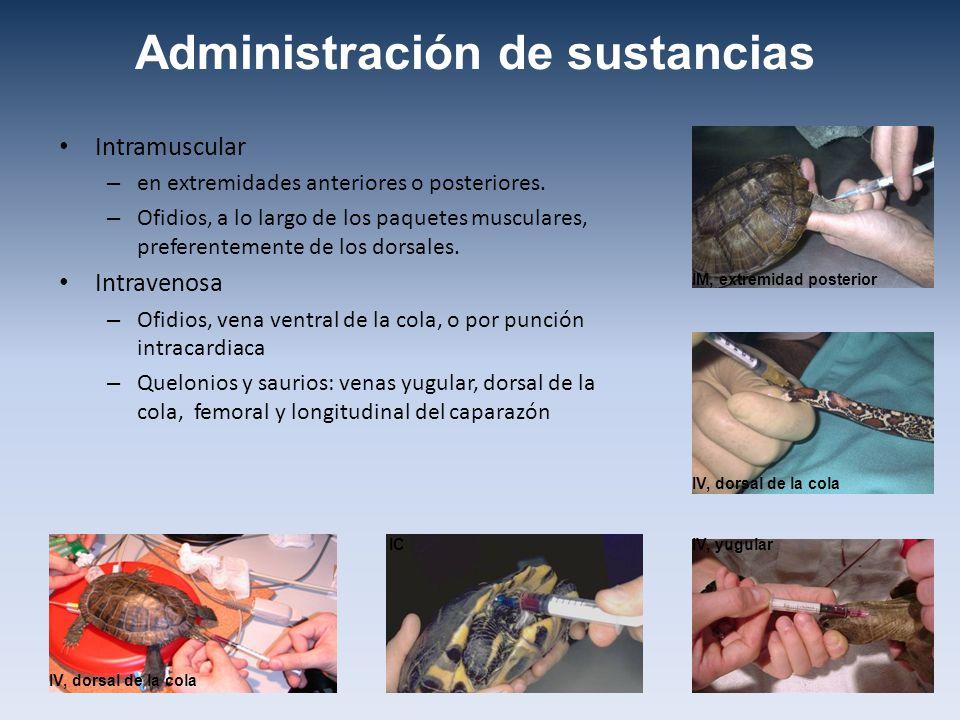 Administración de sustancias