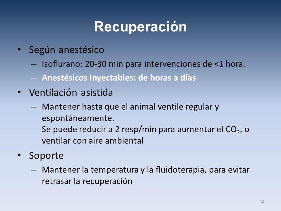 Recuperación Según anestésico Ventilación asistida Soporte