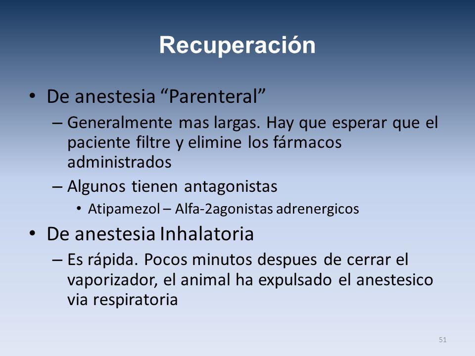 Recuperación De anestesia Parenteral De anestesia Inhalatoria