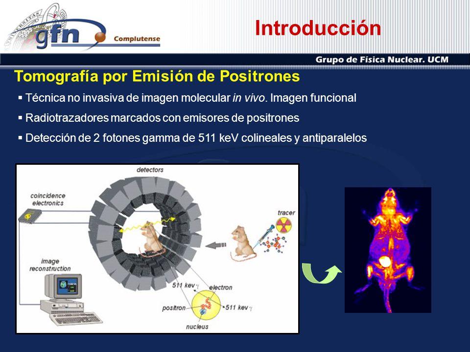 Introducción Tomografía por Emisión de Positrones