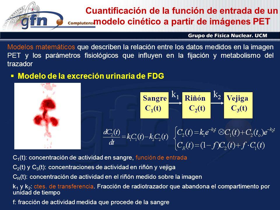Cuantificación de la función de entrada de un modelo cinético a partir de imágenes PET