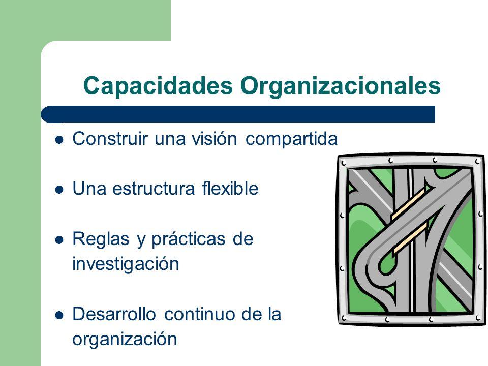 Capacidades Organizacionales