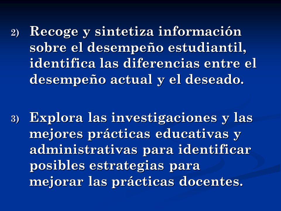 Recoge y sintetiza información sobre el desempeño estudiantil, identifica las diferencias entre el desempeño actual y el deseado.