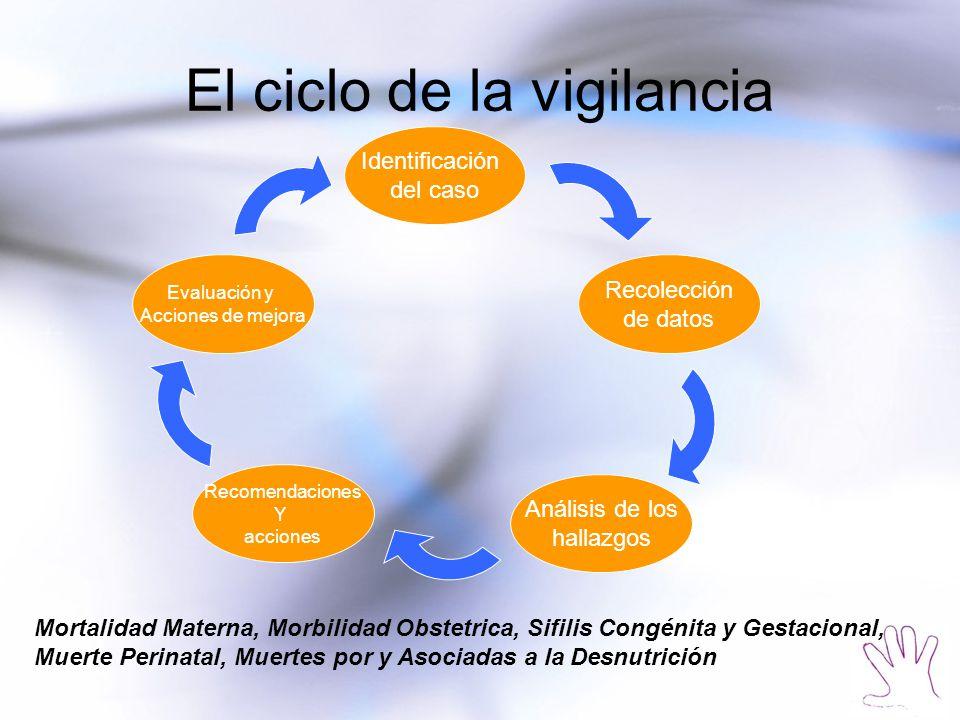 El ciclo de la vigilancia