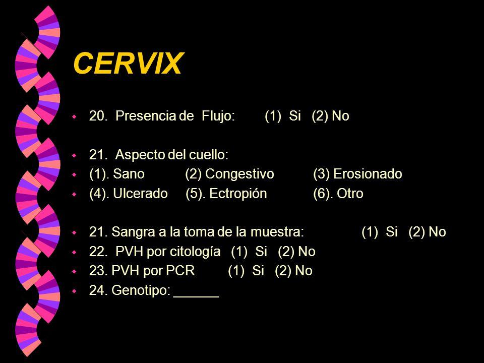 CERVIX 20. Presencia de Flujo: (1) Si (2) No 21. Aspecto del cuello: