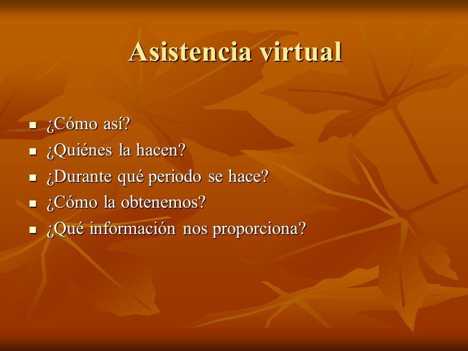 Asistencia virtual ¿Cómo así ¿Quiénes la hacen