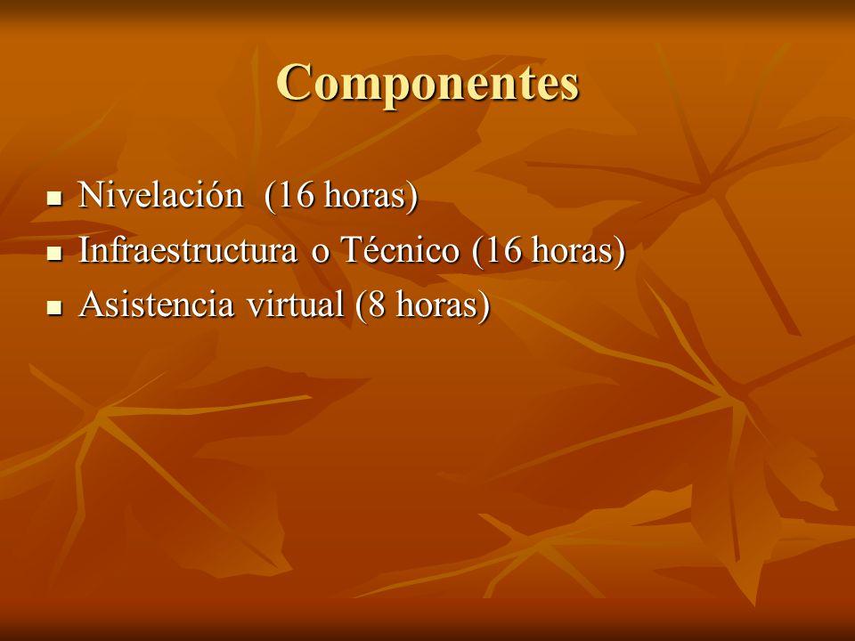 Componentes Nivelación (16 horas) Infraestructura o Técnico (16 horas)