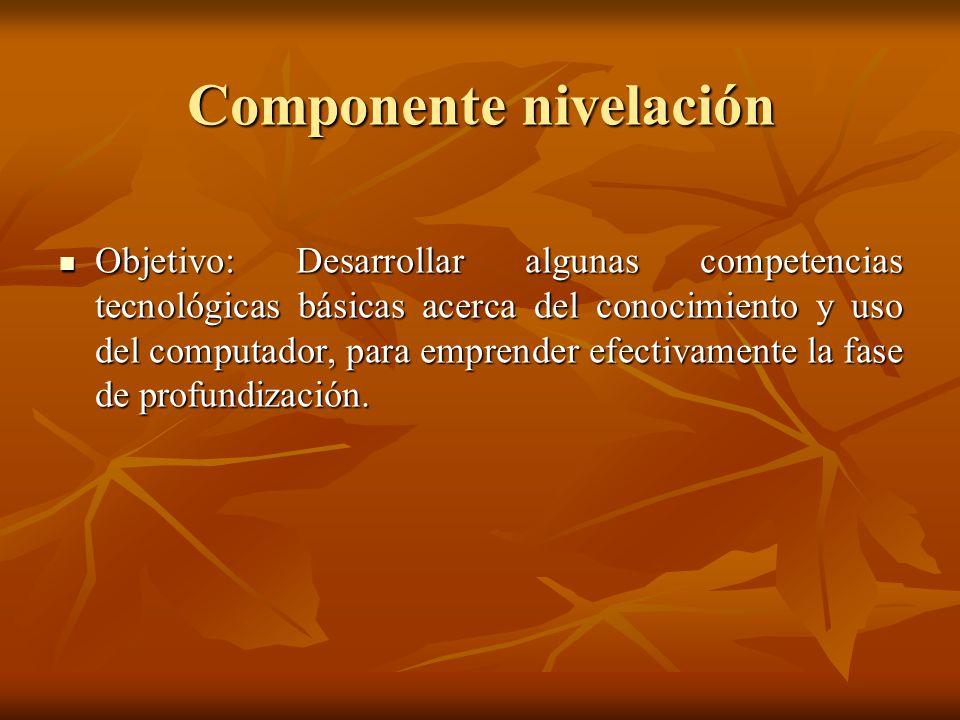 Componente nivelación