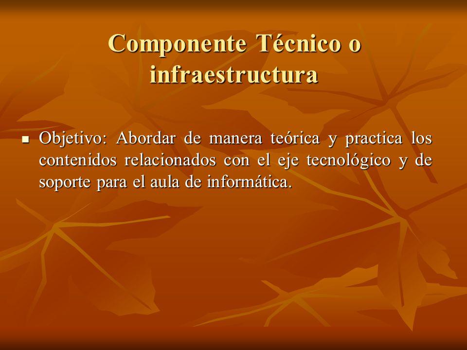 Componente Técnico o infraestructura