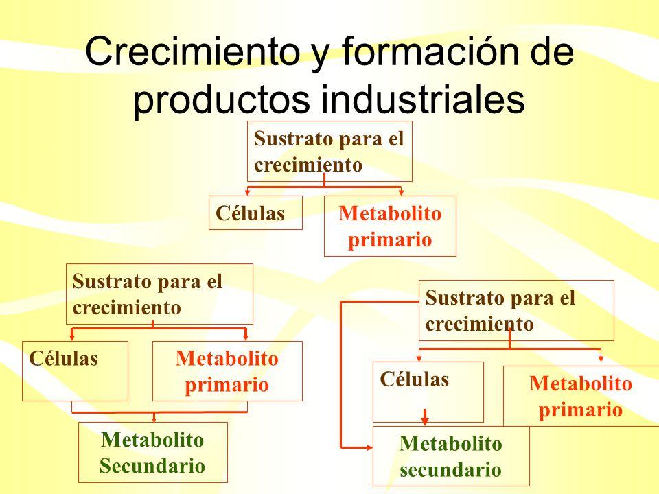 Crecimiento y formación de productos industriales