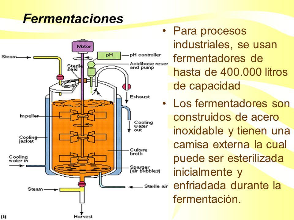 Fermentaciones Para procesos industriales, se usan fermentadores de hasta de 400.000 litros de capacidad.