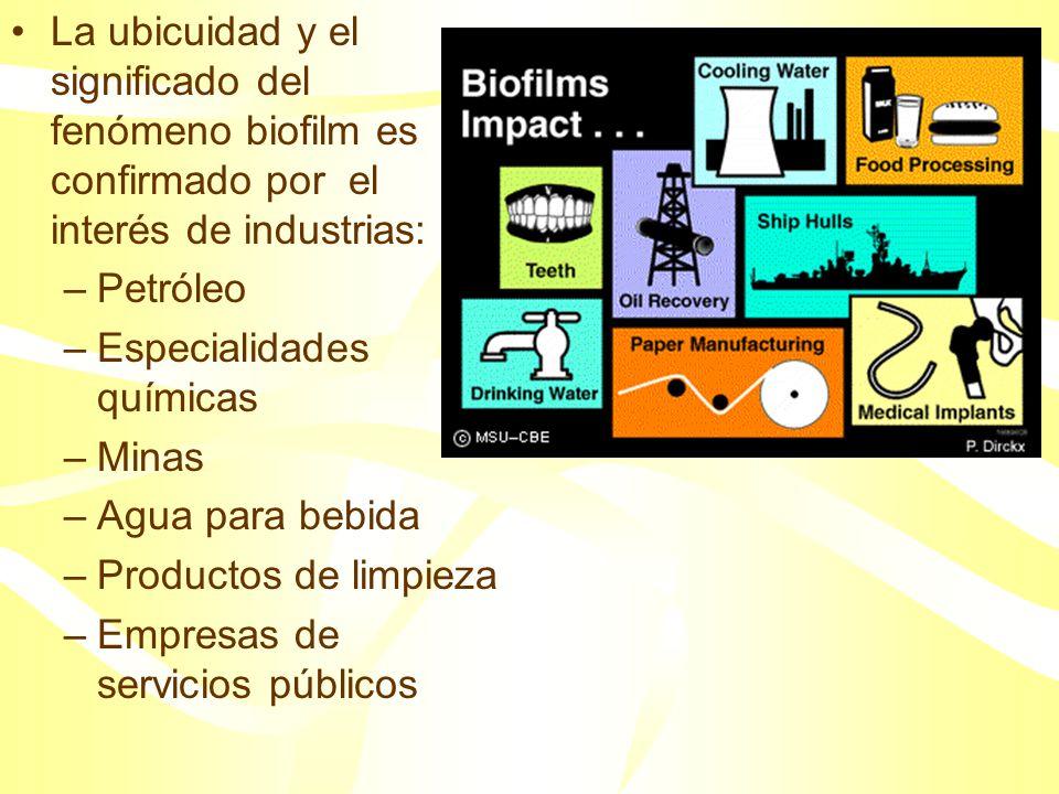 La ubicuidad y el significado del fenómeno biofilm es confirmado por el interés de industrias: