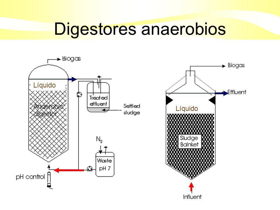 Digestores anaerobios