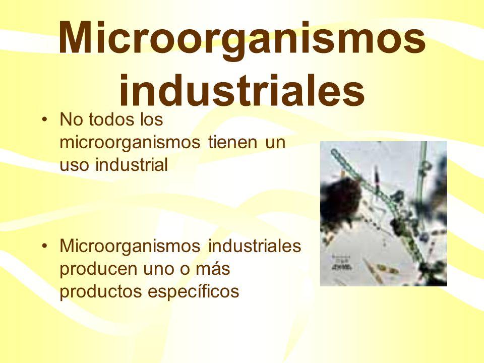 Microorganismos industriales
