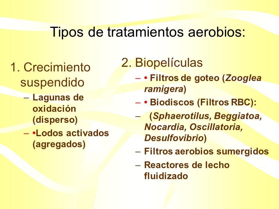 Tipos de tratamientos aerobios:
