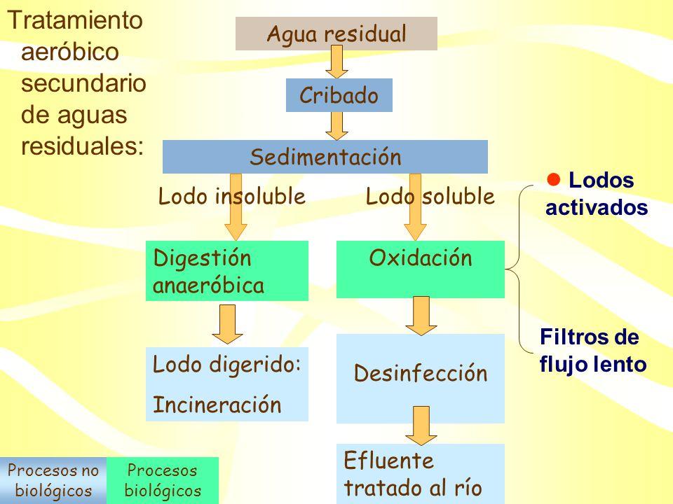 Procesos no biológicos