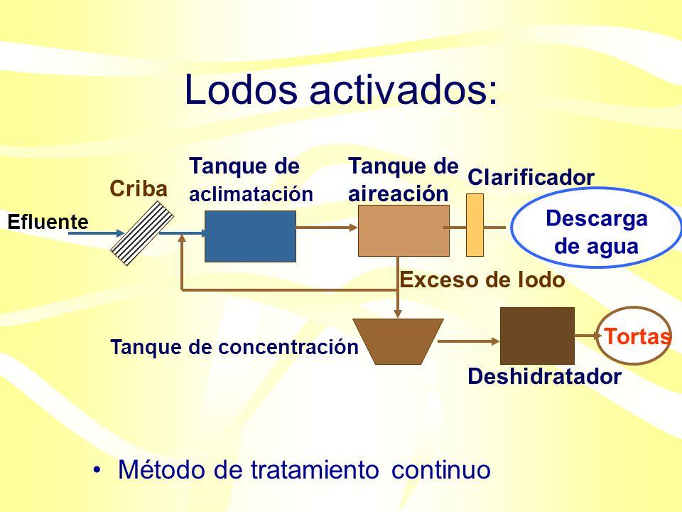 Lodos activados: Método de tratamiento continuo Tanque de aclimatación