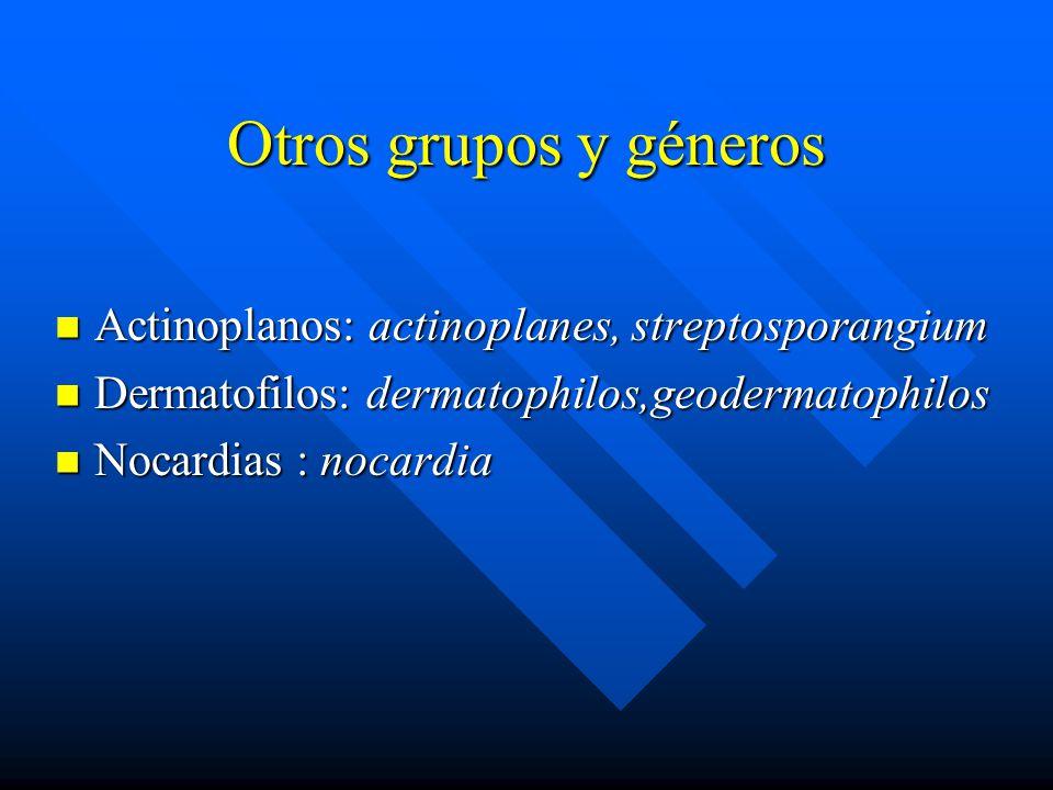 Otros grupos y géneros Actinoplanos: actinoplanes, streptosporangium