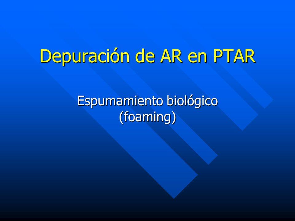 Depuración de AR en PTAR