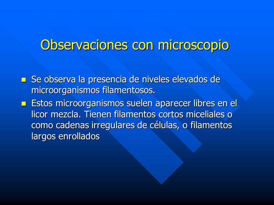 Observaciones con microscopio