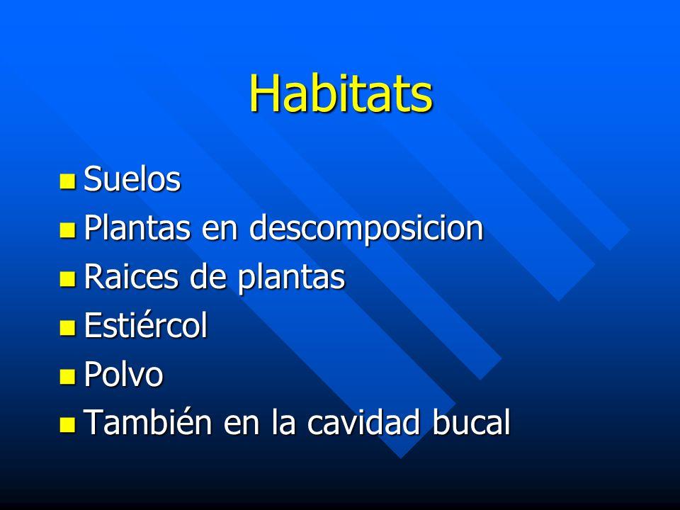Habitats Suelos Plantas en descomposicion Raices de plantas Estiércol