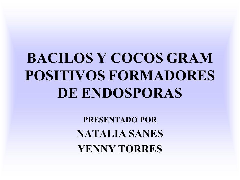 BACILOS Y COCOS GRAM POSITIVOS FORMADORES DE ENDOSPORAS