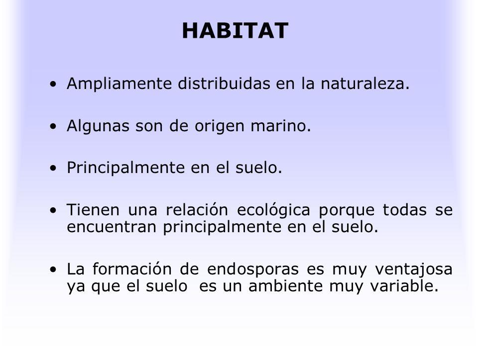 HABITAT Ampliamente distribuidas en la naturaleza.