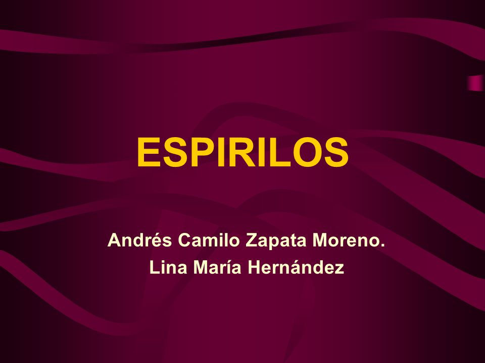 Andrés Camilo Zapata Moreno. Lina María Hernández