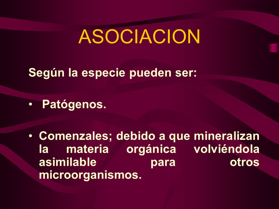 ASOCIACION Según la especie pueden ser: Patógenos.