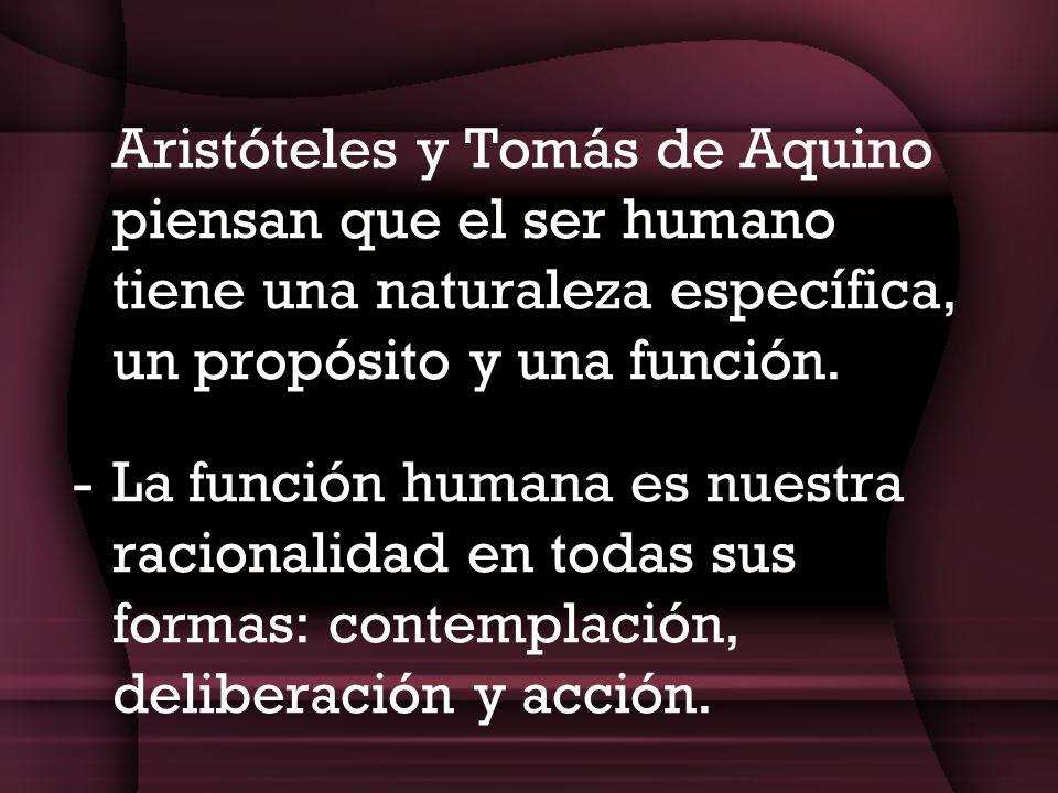 Aristóteles y Tomás de Aquino piensan que el ser humano tiene una naturaleza específica, un propósito y una función.