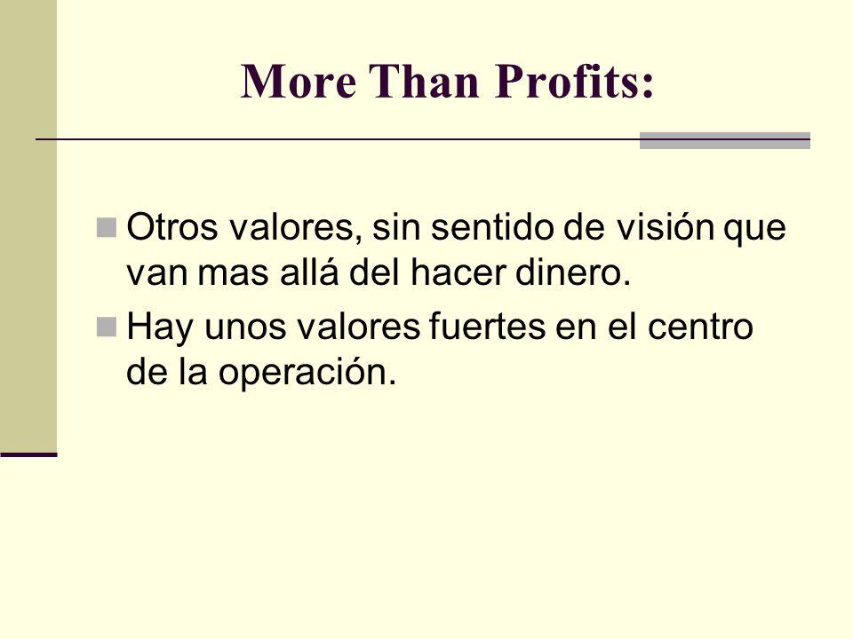 More Than Profits: Otros valores, sin sentido de visión que van mas allá del hacer dinero.
