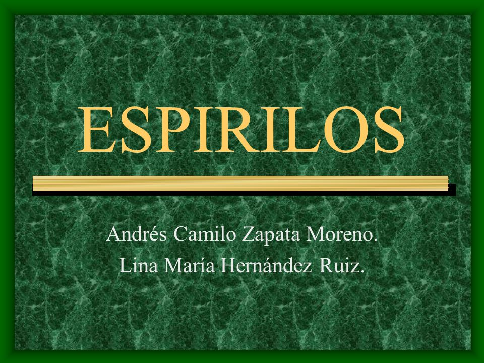 Andrés Camilo Zapata Moreno. Lina María Hernández Ruiz.