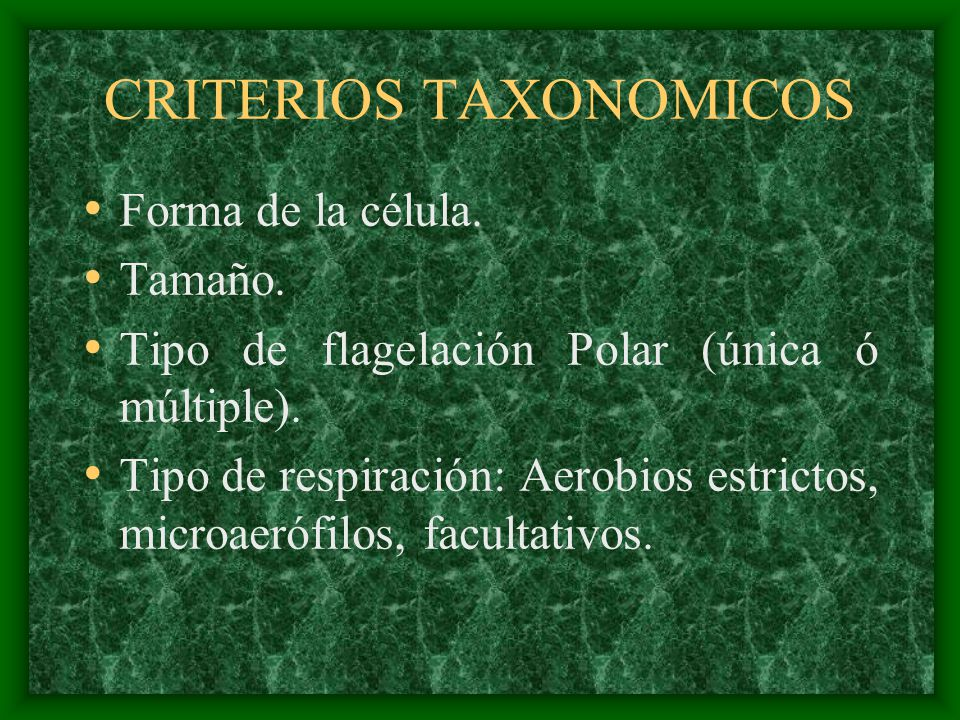 CRITERIOS TAXONOMICOS