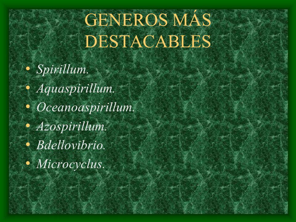 GENEROS MÁS DESTACABLES