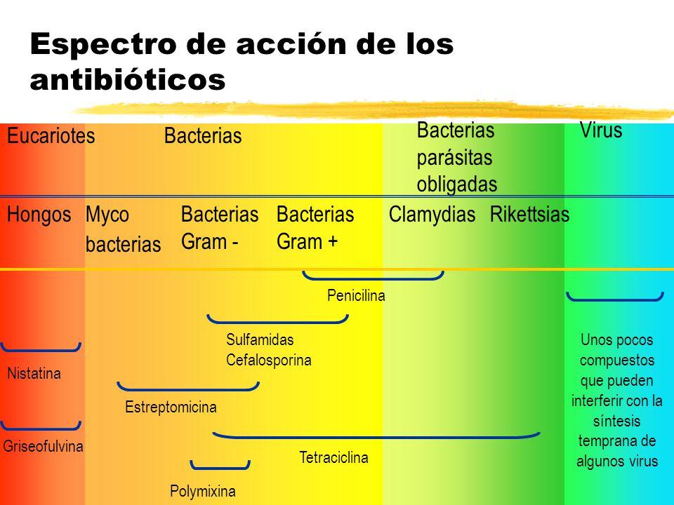 Espectro de acción de los antibióticos