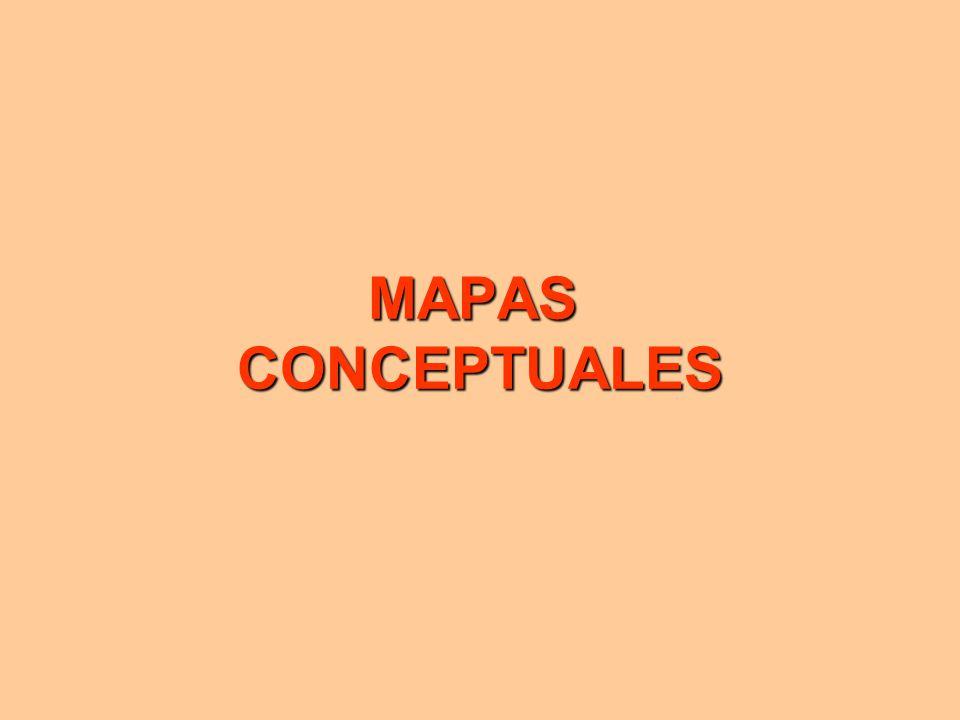 MAPAS CONCEPTUALES 1 1
