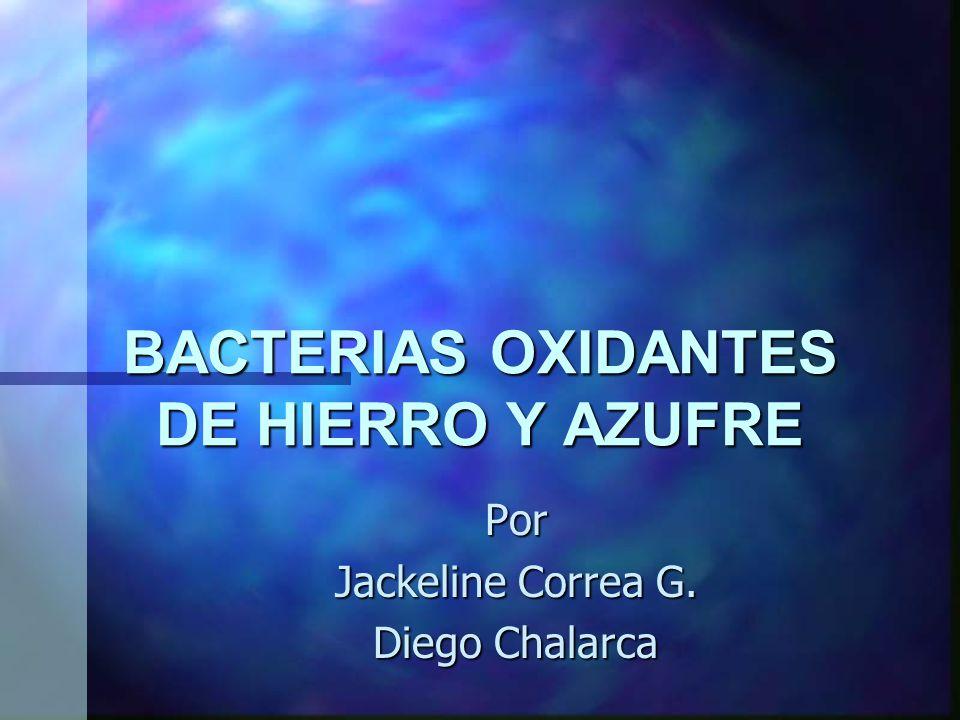 BACTERIAS OXIDANTES DE HIERRO Y AZUFRE