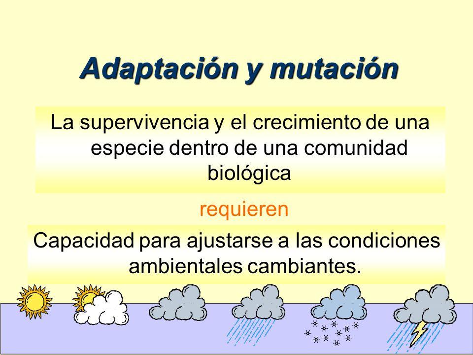 Adaptación y mutación La supervivencia y el crecimiento de una especie dentro de una comunidad biológica.