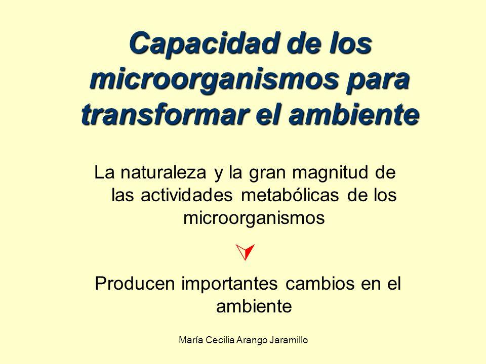 Capacidad de los microorganismos para transformar el ambiente