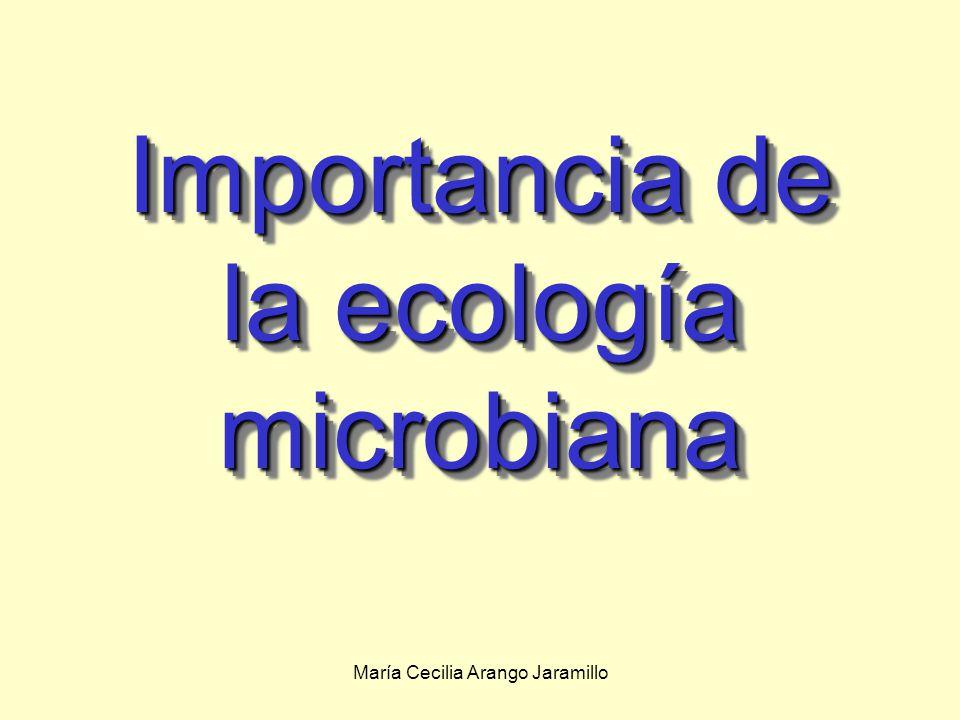 Importancia de la ecología microbiana