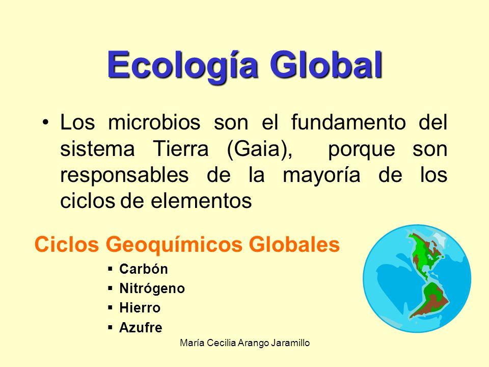 Ciclos Geoquímicos Globales
