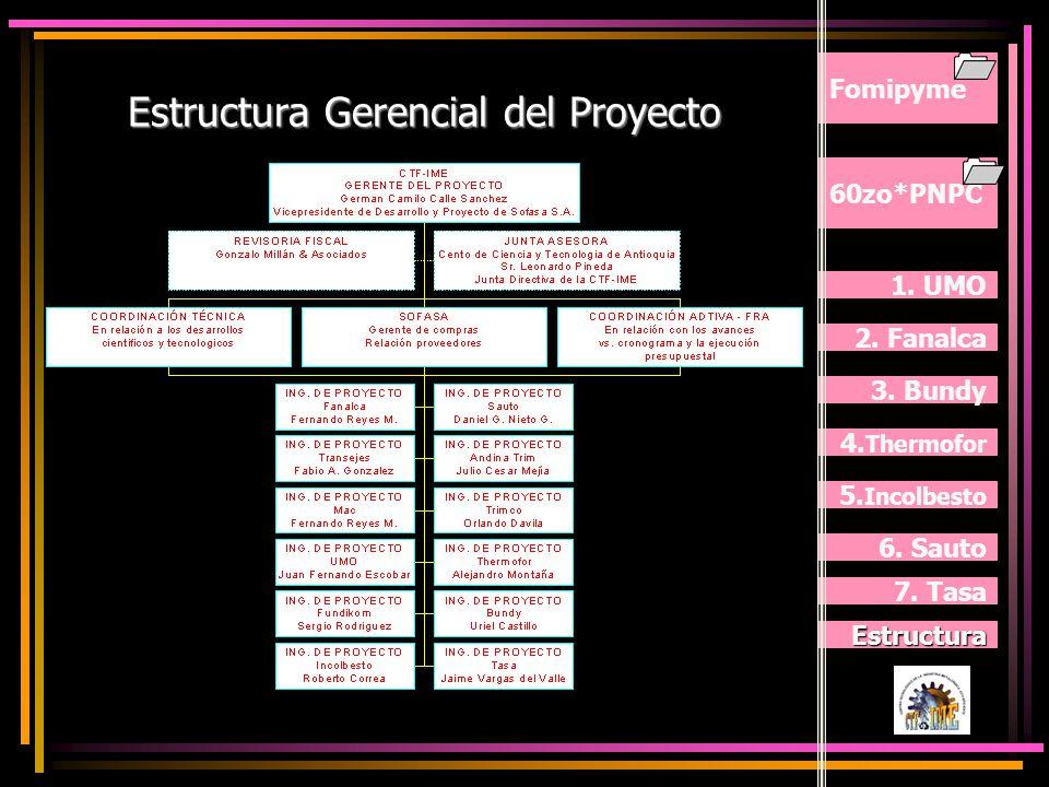 Estructura Gerencial del Proyecto