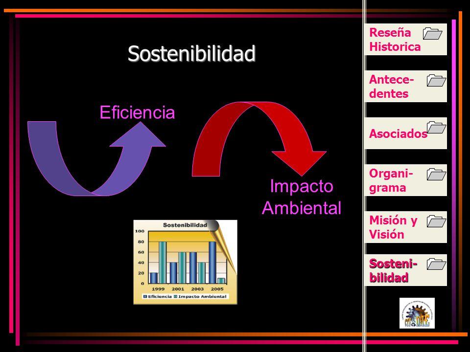 Sostenibilidad Eficiencia Impacto Ambiental Reseña Historica