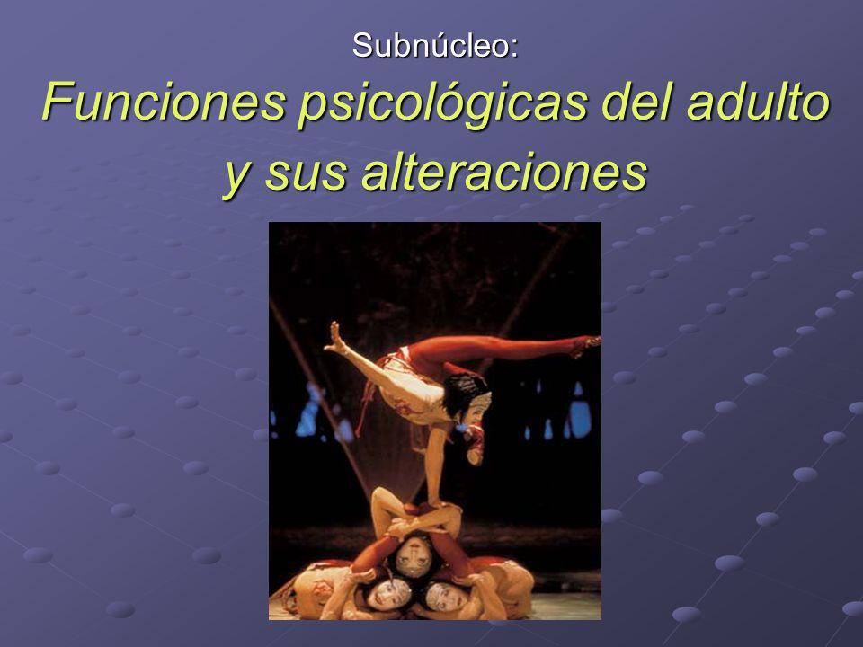 Subnúcleo: Funciones psicológicas del adulto y sus alteraciones